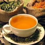 Почечный чай — применение